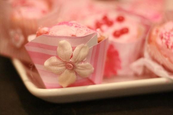 Pink Cupcakes with Pinkalicious 043